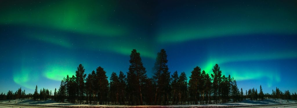 aurore boréale forêt